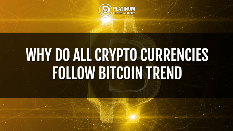 Why Do All Crypto Currencies Follow Bitcoin Trend