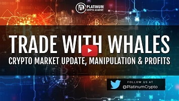 Trade With Whales – Crypto Market Update, Manipulation & Profits
